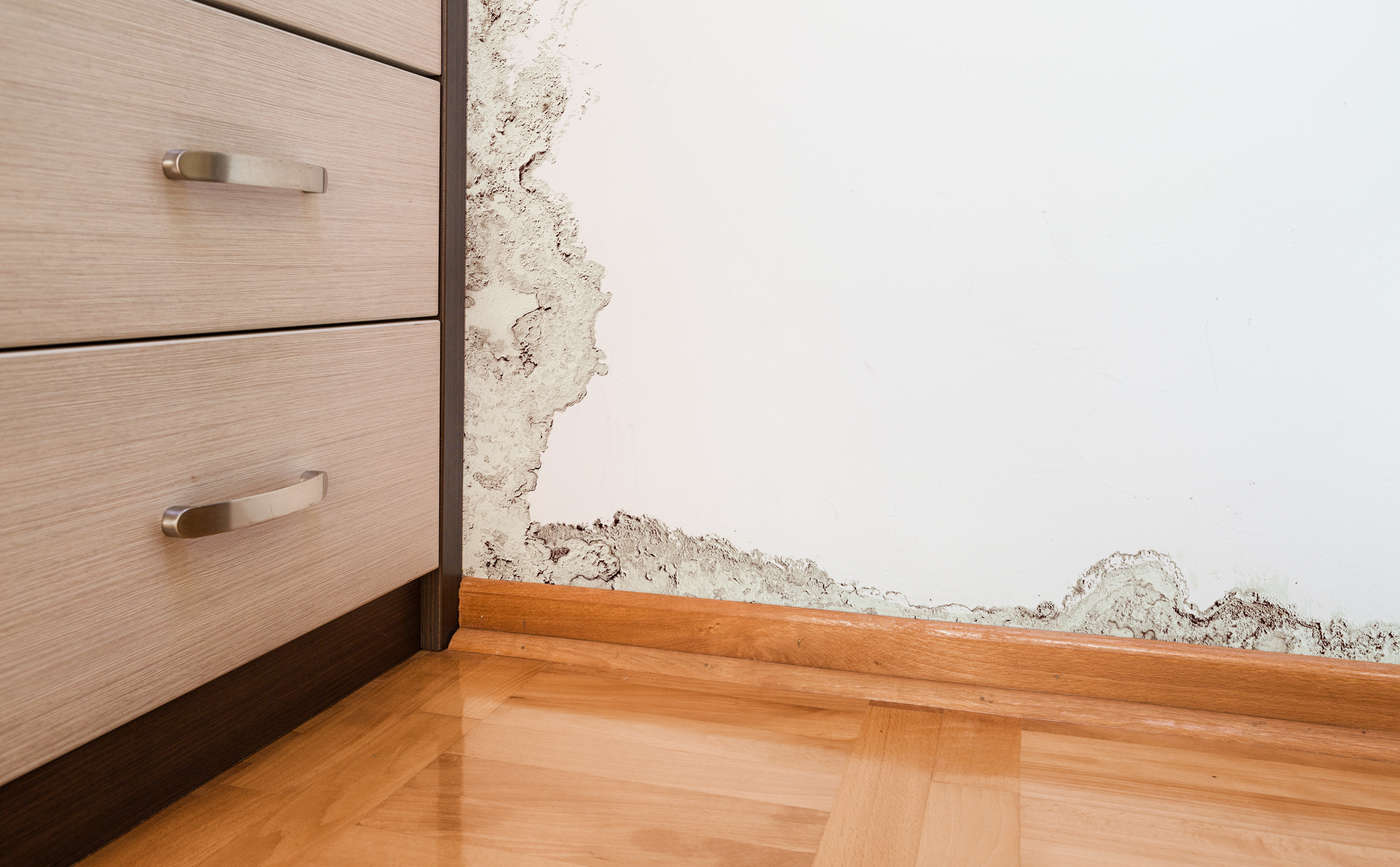 how-to-remove-black-mould-&-condensation-in-a-house-or-flat-weymouth-dorchester-dorset